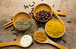 Spices in bowl and spoon Royalty Free Stock Photos