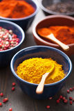 Spices in bowls: curry, pink and black pepper, paprika powder Royalty Free Stock Images