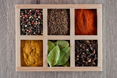 Spices in box cummin, pepper, laurer, curry, paprika, chili Royalty Free Stock Image