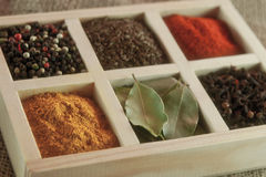 Spices in box: cummin, pepper, laurer, curry, paprika, chili Royalty Free Stock Photography