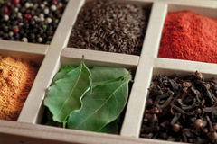 Spices in box: cummin, pepper, laurer, curry, paprika, chili Royalty Free Stock Photo