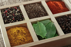 Spices in box: cummin, pepper, laurer, curry, paprika, chili Royalty Free Stock Image
