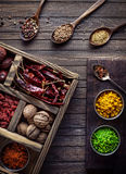 Spices in the box Stock Photography
