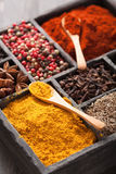 Spices in box: pink and black pepper, ground paprika, curry, ani Stock Images