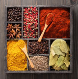 Spices in box pink and black pepper, paprika powder, curry, bay Stock Photos