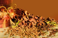 Spices on brown  background Stock Images