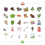 Spices, business, hobbies and other web icon in cartoon style. Spices, business, hobbies and other  icon in cartoon style.sore, addiction, problems, icons in Stock Images