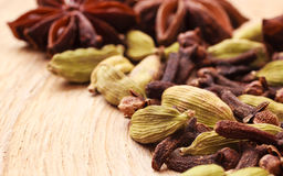 Spices cardamom anise stars and cloves Stock Photography