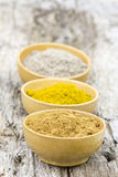 Spices - cardamon, cinnamon, curry Stock Images