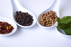 Spices in catering serving spoons Royalty Free Stock Images