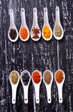 Spices in ceramic bowls Royalty Free Stock Photos