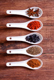 Spices in ceramic bowls Royalty Free Stock Image