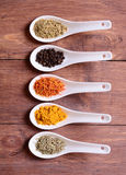 Spices in ceramic bowls Royalty Free Stock Photo