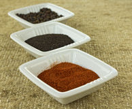 Spices in ceramic containers Stock Images