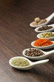 Spices in Ceramic Spoon Stock Photography