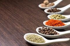 Spices in Ceramic Spoon Royalty Free Stock Photo