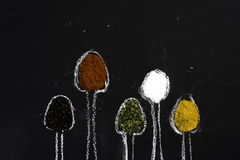 Spices on chalkboard Stock Images
