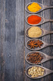 Spices Chili powder, turmeric, masala, cardamom, coriander, star anise Royalty Free Stock Images