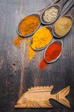 Spices Chili powder, turmeric, masala, cardamom, coriander Royalty Free Stock Images
