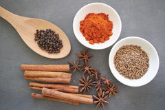 Spices: chillie powder, cinnamon stick, black pepper, cumin seeds and clove flower. Various spices arranged on grey background Stock Photos