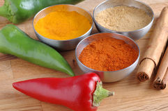 Spices and chillies. Royalty Free Stock Photos