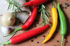 Spices - chillies, onion, garlic, pepper and more Royalty Free Stock Image