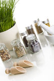 Spices with chive and mortar Royalty Free Stock Images