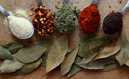 Spices. Choosing spices for daily  cooking Stock Photos
