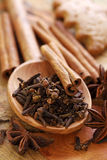 Spices for Christmas cakes Royalty Free Stock Images
