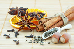 Spices for Christmas decoration Stock Photography