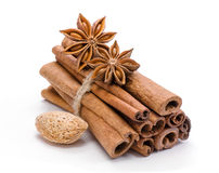 Spices. Cinnamon and anise. Stock Images