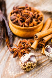 Spices cinnamon and anise Stock Image
