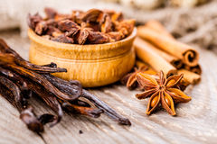 Spices cinnamon and anise Royalty Free Stock Photo