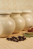 Spices - cinnamon, pimento and  laurels Royalty Free Stock Image