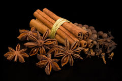 Spices: cinnamon, star anise and allspice Stock Photography