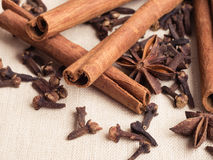 Spices cinnamon sticks anise stars and cloves Stock Image