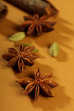 Spices, cinnamon sticks, cardamom, star anise Royalty Free Stock Images