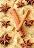 Spices cinnamon sticks, cardamon and anise over heap of brown sugar Stock Photos