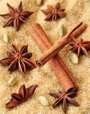Spices cinnamon sticks, cardamon and anise over heap of brown sugar Royalty Free Stock Image