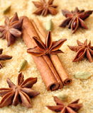 Spices cinnamon sticks, cardamon and anise over heap of brown sugar Stock Photography
