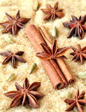 Spices cinnamon sticks, cardamon and anise over heap of brown sugar Stock Images