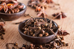 Spices: cloves Royalty Free Stock Photos