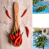 The spices. The collage. Stock Images