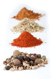 Spices collection Royalty Free Stock Photography