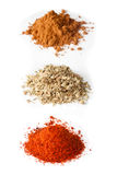 Spices collection Royalty Free Stock Images
