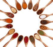 Spices collection Stock Photos