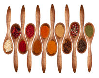 Spices collection Stock Images