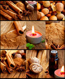 Spices collection collage Royalty Free Stock Photography