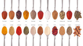 Spices collection on spoons Royalty Free Stock Image