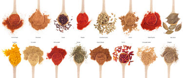 Spices collection on spoons Stock Images